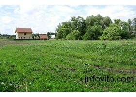 Продам участок земли в деревне Черница.