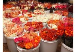 Больше 200 дополнительных площадок для продажи цветов откроют в Минске к 8 Марта