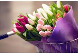 К 8 Марта покупателям предложат более 1,5 миллиона цветов