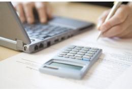 Налоговую декларацию в электронном виде подали более сотни минчан