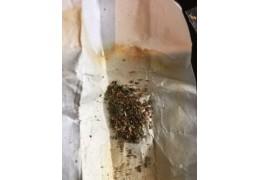 Житель столицы попался на сбыте наркотика