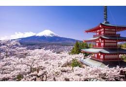 Новую классику японского кино покажут в кинотеатре «Пионер» с 3 по 8 апреля