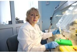 С ДНК не поспоришь: генетики и криминалисты объединяют усилия