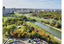 Лучшим районом по благоустройству и озеленению назван Центральный