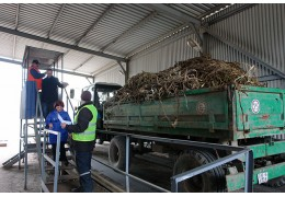 Объект по переработке растительных отходов появится в районе промзоны «Западная»