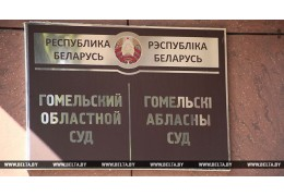 В Гомеле вынесли приговор автомобилистке, которая скрывалась от милиции