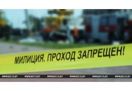 В Бобруйском районе грузовик насмерть сбил велосипедиста