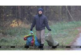 """Более 38 тыс. человек приняли участие в акции """"Чистый лес"""""""