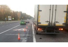 В Лепельском районе грузовик насмерть сбил пешехода