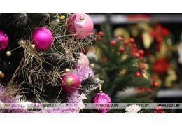 """""""Елку желаний"""" для воспитанников коррекционного центра устроят в Гродно"""