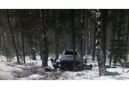 В Любанском районе легковушка врезалась в дерево, погибли два человека