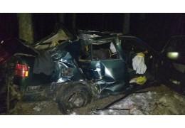 В Речицком районе автомобиль врезался в дерево, погиб водитель