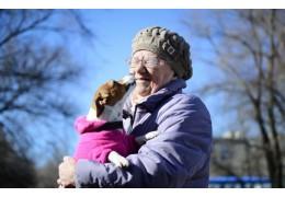 Около 10 площадок для выгула собак намерены обустроить во Фрунзенском районе