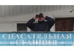 """БРСМ и ОСВОД проводят акцию """"Зимний патруль"""""""