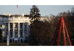 Главная рождественская елка США останется без иллюминации