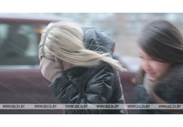Снег с дождем и сильный ветер ожидаются в Беларуси 14 января
