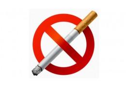 Курящих мужчин в Беларуси почти в 4 раза больше, чем курящих женщин