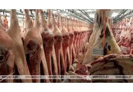 Беларусь ограничила ввоз свинины из Болгарии и двух регионов Китая из-за АЧС