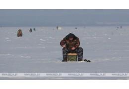 Двое рыбаков провалились под лед в Речице