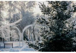 Очень скользко, возможен снег. Синоптики о погоде на 6 февраля