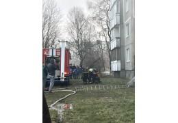 Пожар в Малиновке. Из загоревшейся квартиры спасатели вынесли собаку