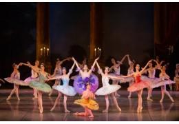 Мексика готовится принять балетный десант из Минска