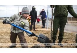 Более 60 человек поучаствуют в закладке парка семейных деревьев в Новополоцке