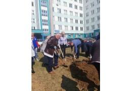 Медики озеленили территорию 10-й поликлиники