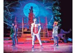 Актер Дмитрий Матиевский: «Все премудрости сцены постигал прямо на ней»