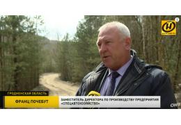 Бывшие меловые карьеры в Гродно превращаются в свалку строительного мусора