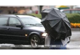 Дожди и грозы прогнозируют в Беларуси 10 мая