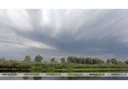 Дожди и грозы ожидаются в Беларуси 11 мая