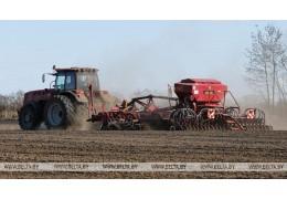 Яровой сев в Беларуси проведен на более чем 90% площадей