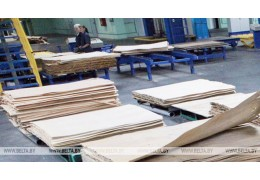 """Экспорт предприятий """"Беллесбумпрома"""" в Казахстан в I квартале вырос на 8,2%"""