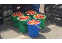 Более 1 тыс. т клубники закупили заготовители у жителей Лунинецкого района