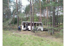 В Воложинском районе умер водитель, травмы получили трое пассажиров