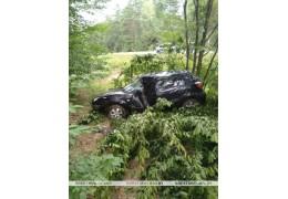 Пинский район: автомобиль опрокинулся в кювет