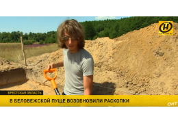 Археологи изучают стоянку каменного века посреди Беловежской пущи