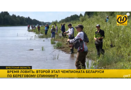 Чемпионат по ловле рыбы. Где в Минске забросить удочку?