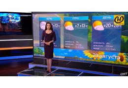 Прогноз погоды на 23 августа: днем все еще лето