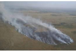 В Столинском районе горят болота. Пожар тушат в том числе с помощью вертолетов