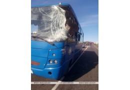 В Барановичском районе не разминулись автобус и грузовик