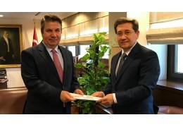 Посол Беларуси вручил копии верительных грамот в МИД Турции