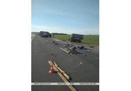 В Пинском районе в результате лобового столкновения грузовиков погиб водитель