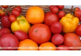 В октябре больше всего подорожали огурцы и помидоры, подешевела - морковь