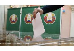 Парламентские выборы в Беларуси - мнения международных наблюдателей