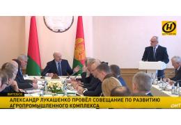 Лукашенко: долги отсрочим, но будете кровью зарабатывать деньги