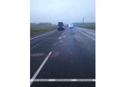 Задержан водитель, совершивший смертельное ДТП в Пинском районе