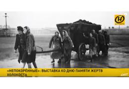 Выставка к Международному дню памяти жертв холокоста открылась в Москве