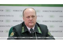 Вырубка леса в Беларуси не наносит ущерба природе - Минлесхоз